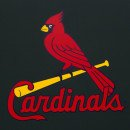 St. Louis Cardinals- Minor Leaguers You Should Know- Shortstop