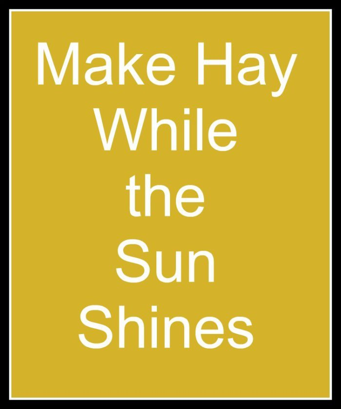 make hay while the sun shines short story The idiom, make hay while the sun shines originated in an agricultural setting and originally it was in the form when the sun shineth, make hay this unique expression refers to the production of hay after a harvest the warmth of the sun's rays dry up the wheat stalks and turns them into hay.